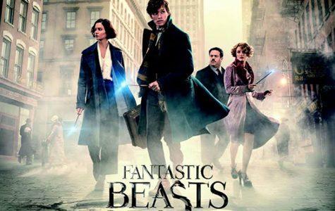 Harry Potter prequel succeeds in box office
