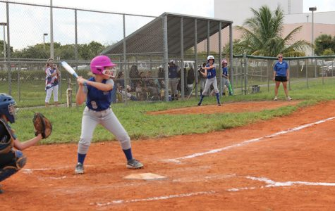 Softball team suffers loss, works for improvement