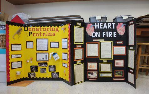 Science fair plays large part of curriculum